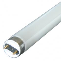 http://www.accesstoretail.com/uploads/partimages/triophosphor-t8-fluorescent-tubes-large_250.jpg